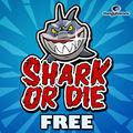 Shark Or Dieモトローラ240x300