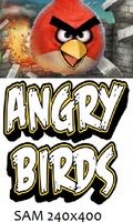 Angry Birds REAL FULLSCREEN 240x400