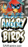 Angry Birds REAL FULLSCREEN 400x240 [LAN