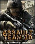 Assault Team 3D