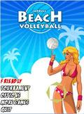 Beach volly Ball Touchscreen