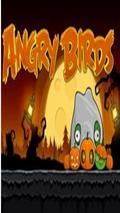 Angry Brids Season Helloween 360x640 HD