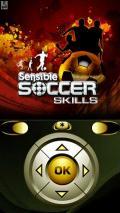 Sensible Soccer Skills ML