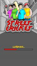 Street Cricket 1.0