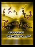 Введите Flip 240x320
