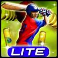 Cricket T20 Fever Lite Baru