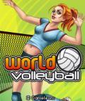 World Volleyball (Bluetooth/Multiyou)