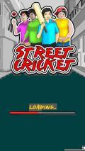 Cricket đường phố!