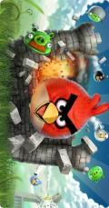 ANGRY BIRDS 100% TESTED SIGNED VERSION MADHUKAR M