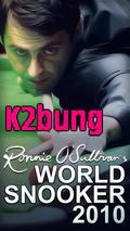 Ronnie O Sullvia World Snooker2010 3D