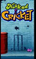 Nukkad Cricket [240x320]