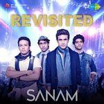 Sanam Re Title Track