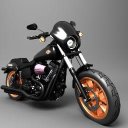 Harley Run