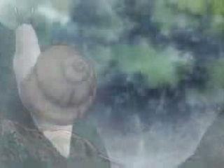 The story of Saiunkoku episode 5 english dubbed