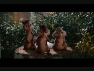 Chipmunks -Happy Birthday Song