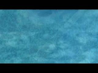 Chull - Fazilpuria - feat. Badshah