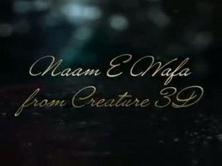 Farhan Saeed - Naam e wafa