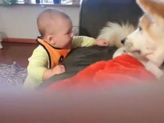 Funny Babies Talking to Dogs Part 1