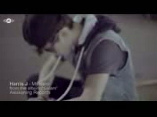 My Hero Video Song