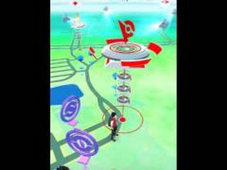 Pokemon GO! Training at your gym!