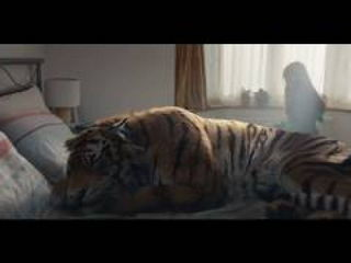 WWF-UK Christmas advert 2016