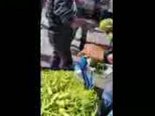 Amazing Fruit Seller