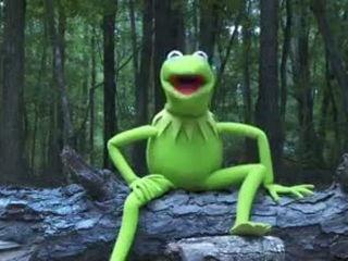 Kermit the Frog Ice Bucket Challenge Very Funny