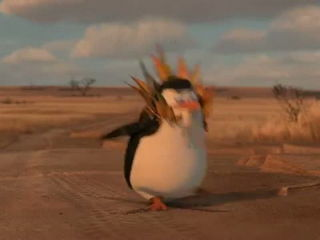 Madagascar Penguins Best and funniest Team work