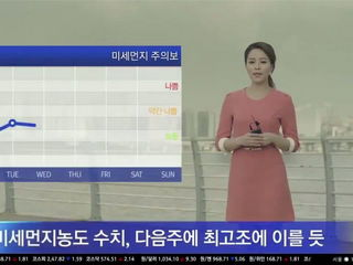 Korean Reporters Laugh on LIVE