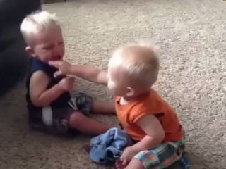 Two Babies Fight Over A Pacifier