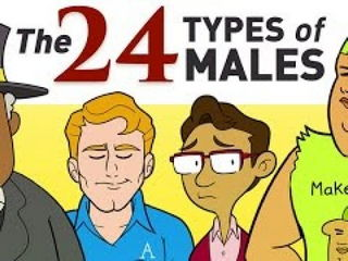 All 24 Types Of Males Explained