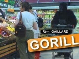Scared Gorilla