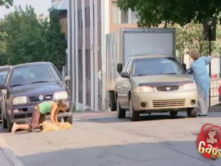 Roadkill Cat Prank