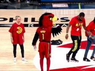 Harry The Hawk Does Running Man Challenge