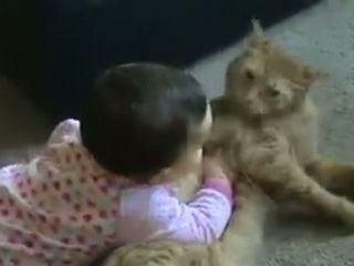 Baby Pampered With Cat