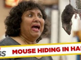 Mouse Hidden in Woman's Hair