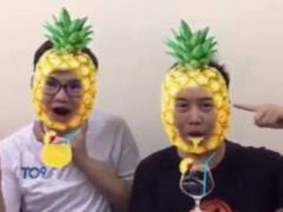 PPAP Pen Pineapple Apple Pen Cover
