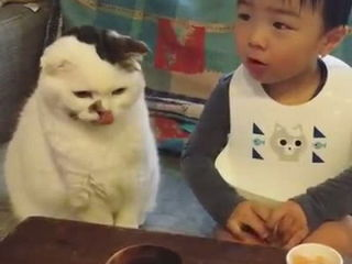 How cute! Cat and Baby