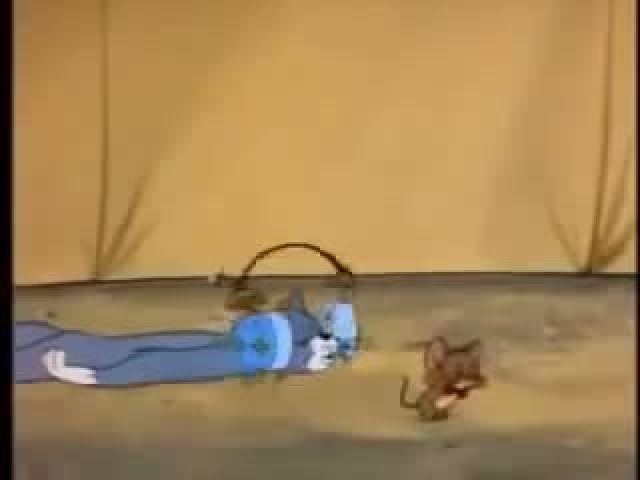 Tom & Jerry (3)