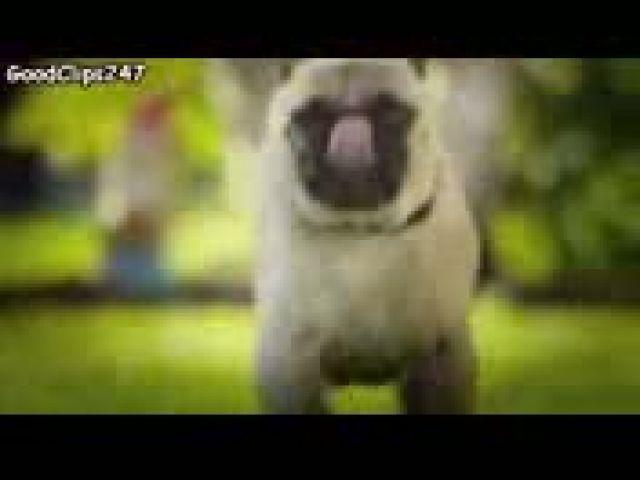Top 15 Funny Commercials