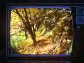 Oddity - Mothernature MV