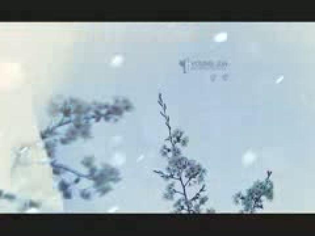 YOUNG JUN (BROWN EYED SOUL)) - 달밤 (Moon Night) MV