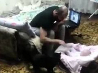 Cat Save Baby From Evil Dad