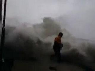 Typhoon Chaba hits Busan Korea