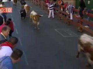 Primer encierro de la Fiestas de San Sebastián de los Reyes con reses de la ganadería de Juan Albarrán.