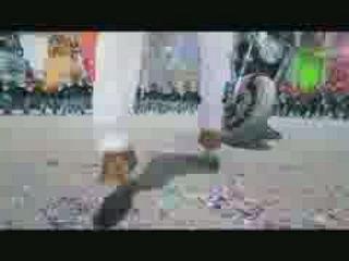 Jithu Jilladi Video Song