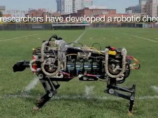 MIT Robotic Cheetah