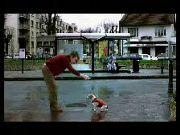 Kick Dog R10