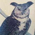 Owl Creepy