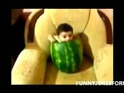 Funny Baby Top Funny Baby Videos 2013